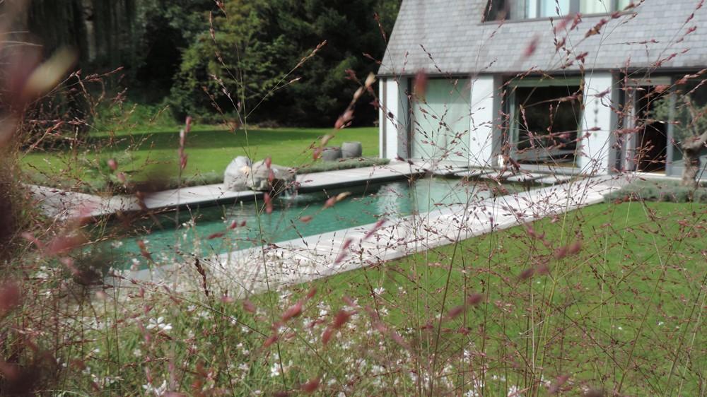 piscine_ou_piece_d_eau18.jpg