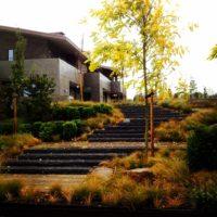 landscapedesign3.JPG